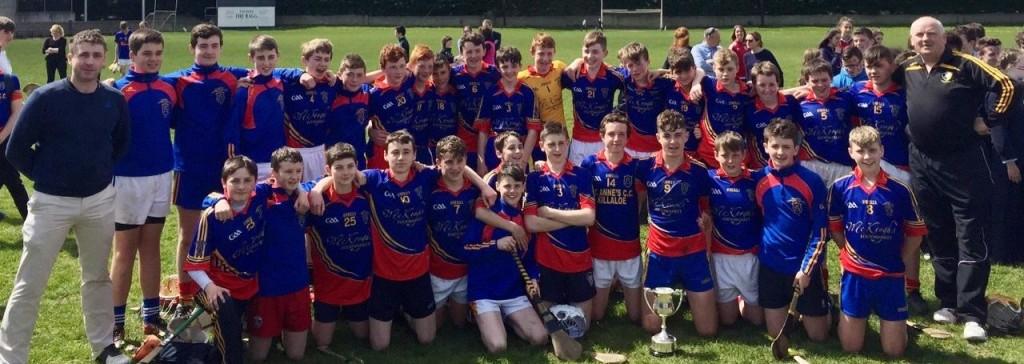 Boys U 15 Hurling Munster Final Winners